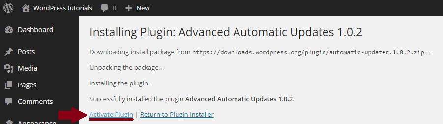 Automatische-WordPress-Plugin-updates-installeren-activeren