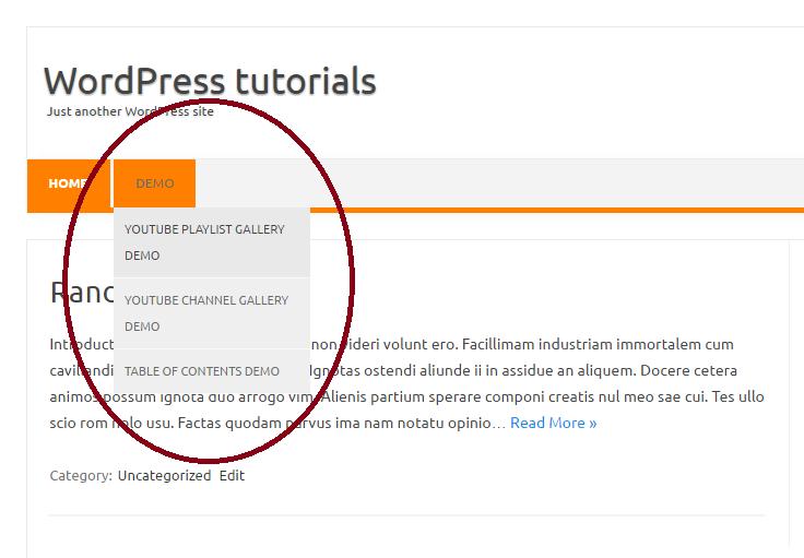WordPress-submenu-resultaat